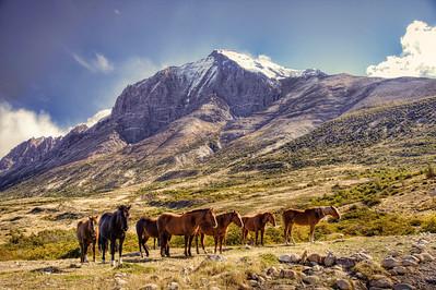 Estancia in Torres del Paine National Park, Chile. (HDR)