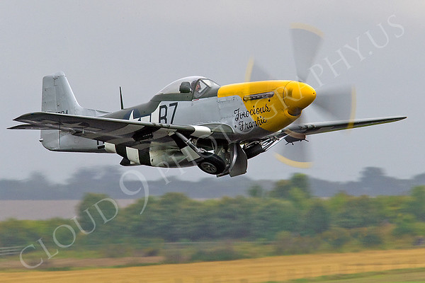 WB - North American P-51D Mustang 00040 North American P-51D Mustang Ferocious Frankie by Tony Fairey