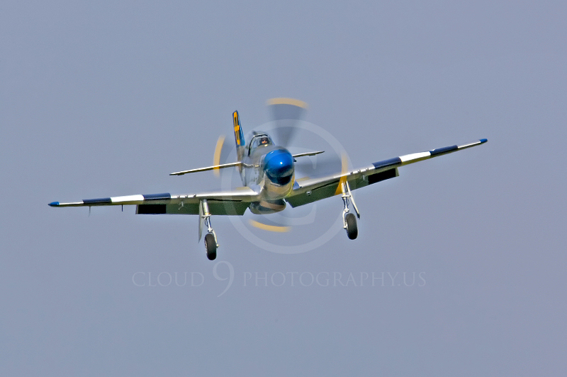WB - North American P-51D Mustang 00076 North American P-51D Mustang Jumpin Jacques by Tony Fairey