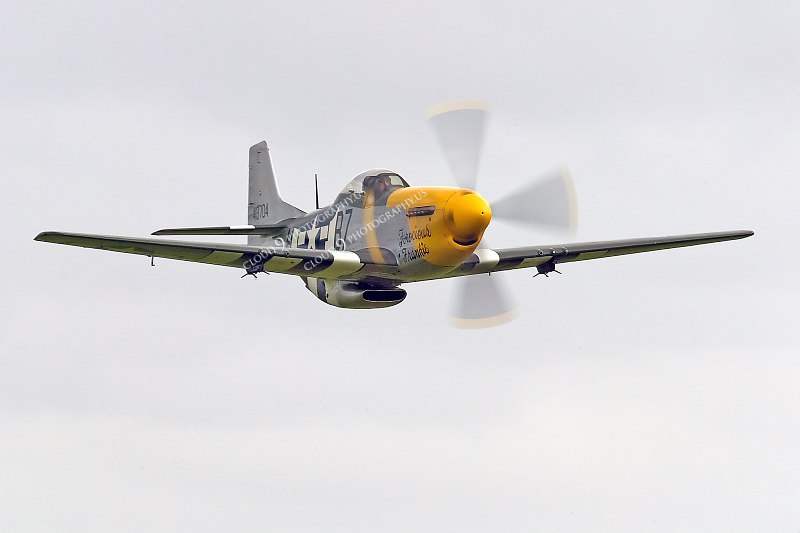WB - North American P-51D Mustang 00064 North American P-51D Mustang Ferocious Frankie by Tony Fairey
