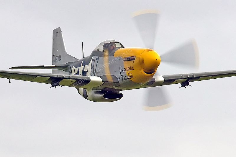 WB - North American P-51D Mustang 00100 North American P-51D Mustang Ferocious Frankie by Tony Fairey