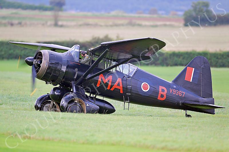 WB - Westland Lysander 00003 Westland Lysander British RAF by Tony Fairey