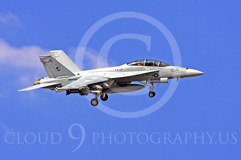 Boeing F-18F - USN 00028 Boeing F-18F Super Hornet US Navy VX-31 by Paul Ridgway