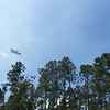 ormond wildfire 025