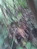 IMG_20120825_102031