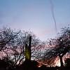 www.randallphotography.net