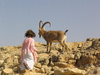 Mitzpe Ramon, Israel