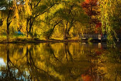 Hall's Pond, Brookline, Massachusetts