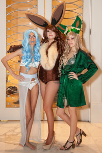 Glaceon, Eevee, & Leafeon