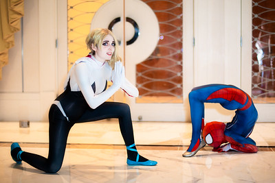 Spider-Woman & Spider-Man