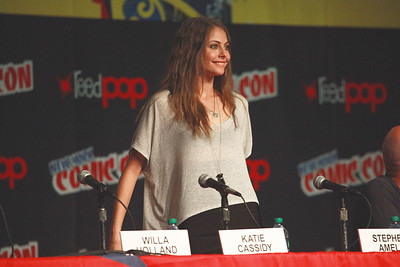 Arrow: Willa Holland