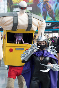 Krang & Shredder