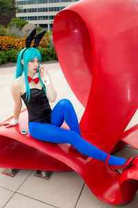 Bulma Brief