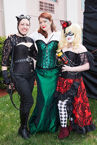 Catwoman, Poison Ivy, & Harley Quinn