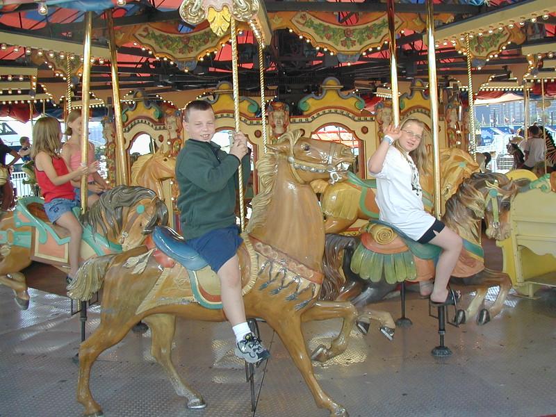 IL navy pier carousel