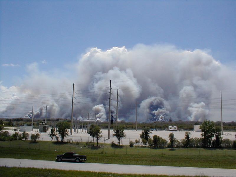 everglades-fires-04-sawgrass
