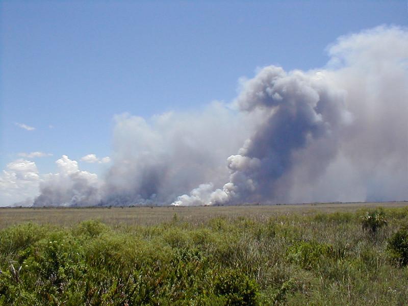 everglades-fires-01