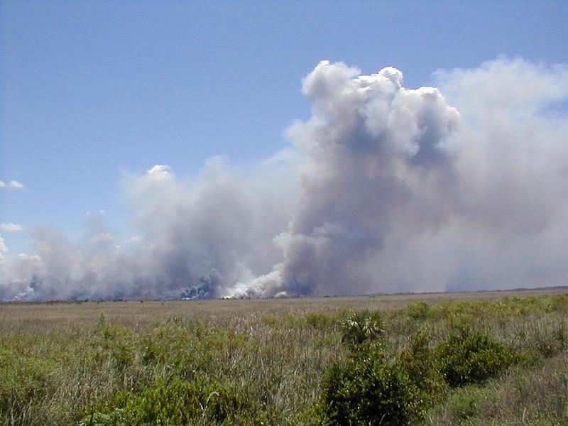 everglades-fires-02