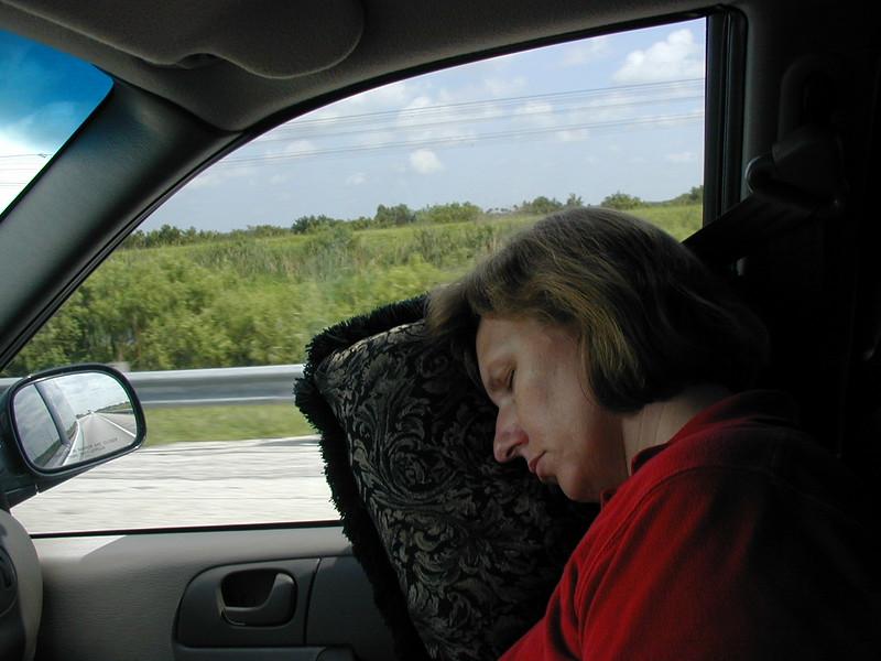 drive theona sleeps