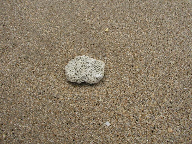 beach-30