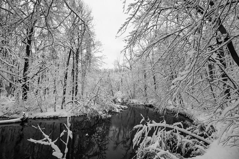 feb-snow-day-bw-10