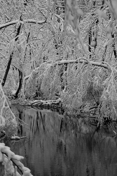 feb-snow-day-bw-14