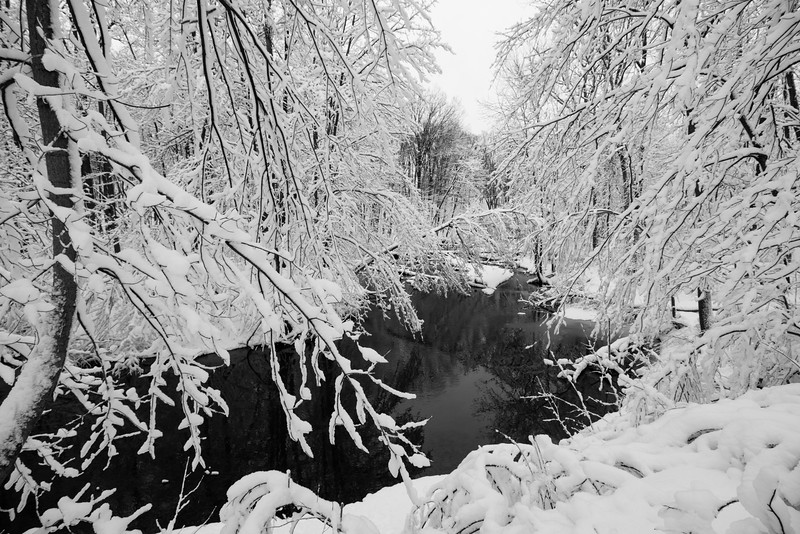 feb-snow-day-bw-02