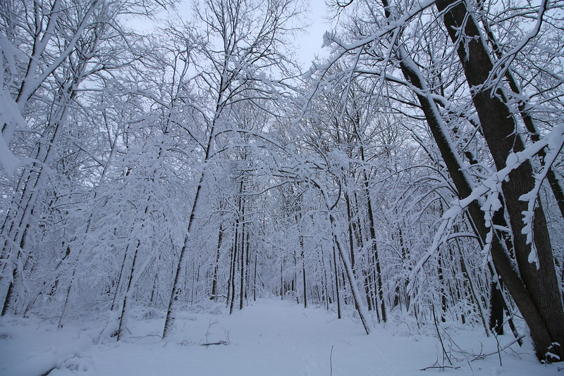 feb-snow-day-03