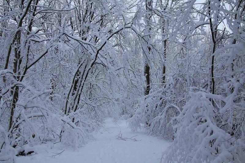 feb-snow-day-18