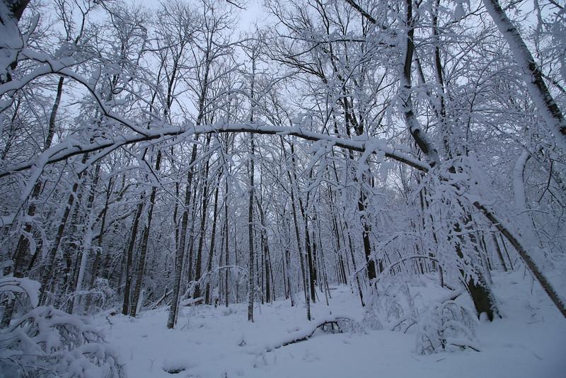 feb-snow-day-07