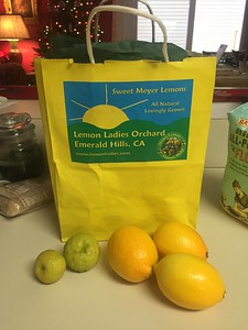 Fresh Myer lemons and makrut (kaffir) limes. Amazing!
