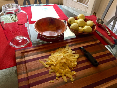 Rinds from 11 lemons. Exclude as much pith as possible.