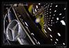 5D-Mark-II__MG_2303-Edit