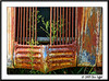 3891_CarRanch0907-RGB2