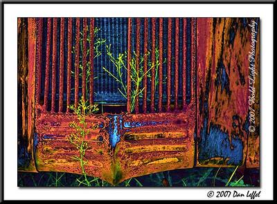 Copy of 3891_CarRanch0907-RGB2-Sat-Bright