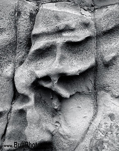 Stone Face Niagara River Gorge USA