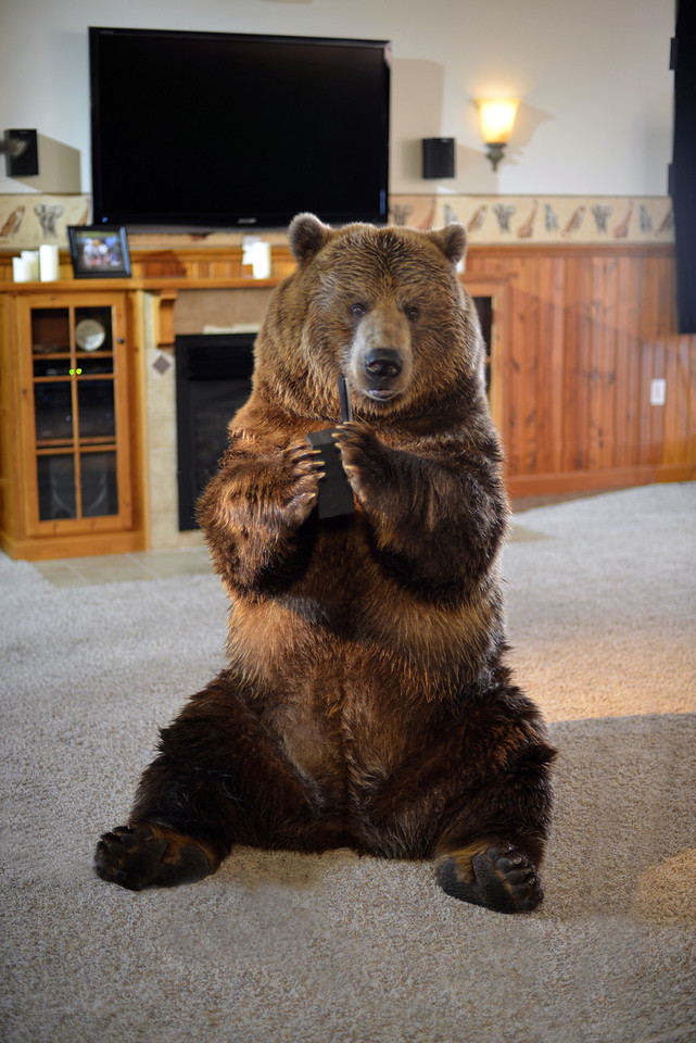 DSC-0173 Vital Choice, Betty the Bear on set, PBamber