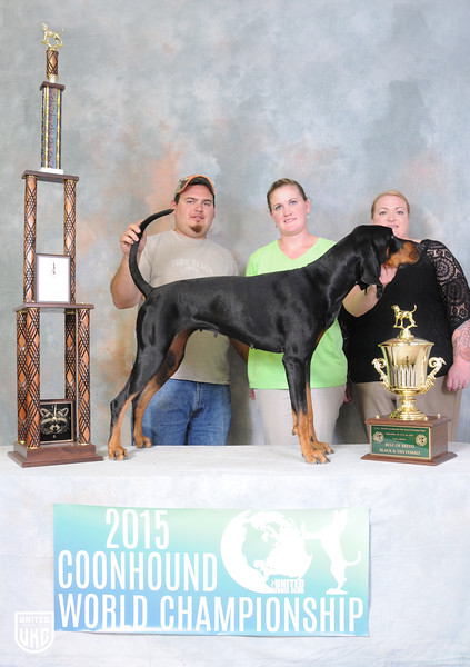 Coonhound World Championship