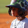 Baseball : 3 galleries with 40 photos