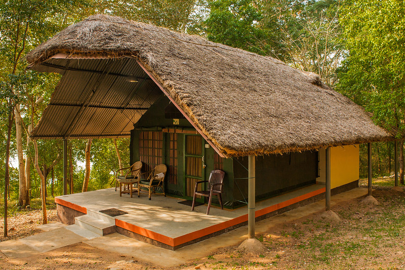 Tents at Jungle Ladges, Kabini in Karnataka
