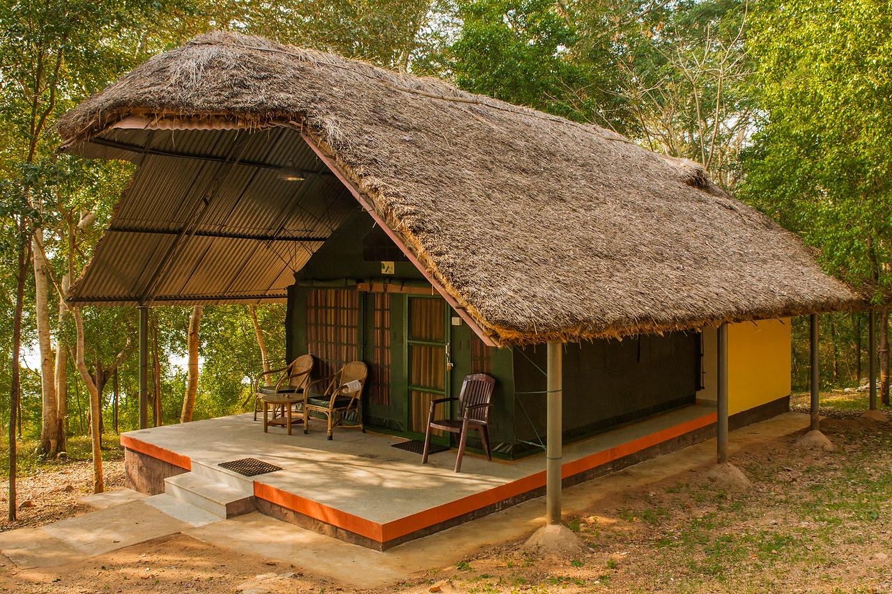 Tents at Jungle Ladges, Kabini in Karnataka