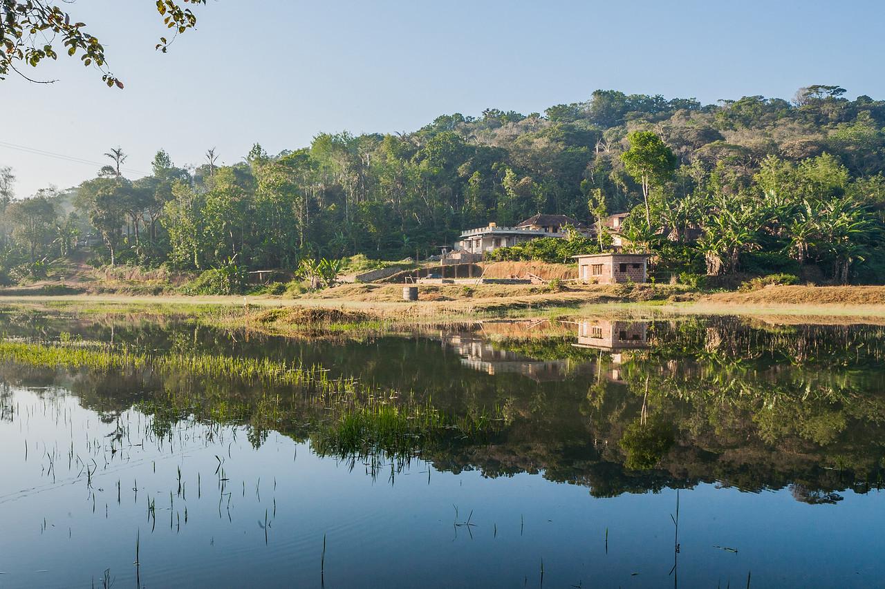 Common landscape in Coorg, Karnataka