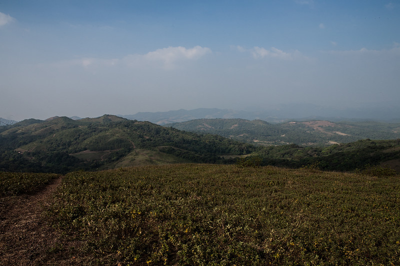 Landscape of the Western ghats from the Padmagiri peak in Coorg, Karnataka