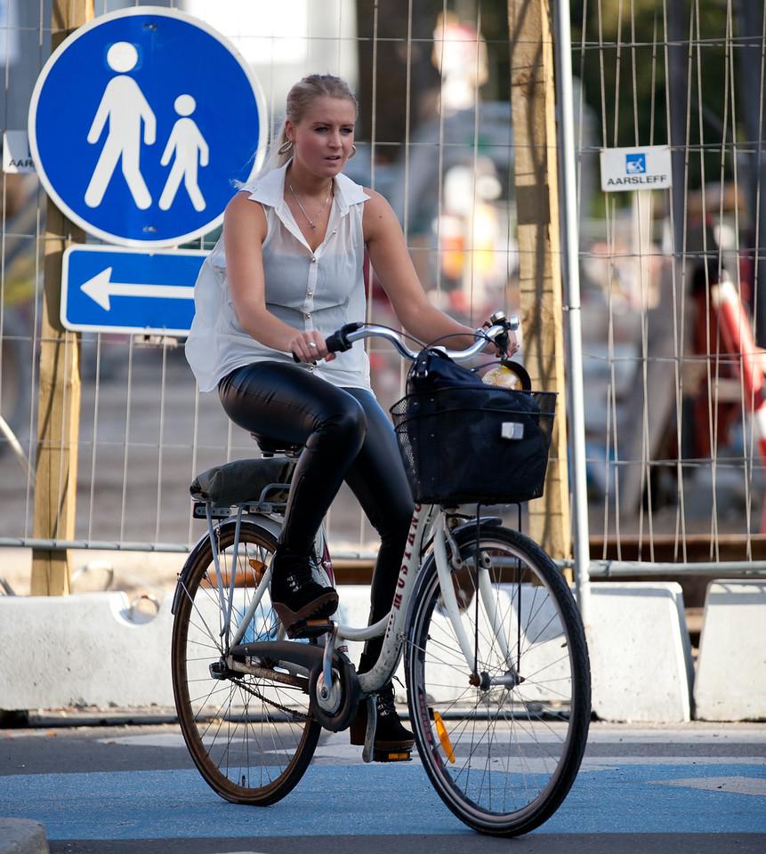 IMAGE: http://photo.mellbin.com/Denmark/Denmark-2011-Copenhagen-1/i-hnbvzKD/1/X2/IMG3604-X2.jpg