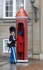 A guard at the home of the Danish Royal family, Amalienborg Royal Palace.