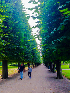 Copenhagen, Denmark, Public Park Scene with Road and LIne of Trees, King's Garden, Kongens Have,