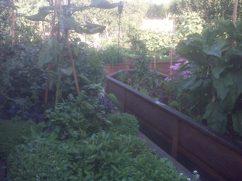 """Edible gardens are the best use of rain water.<br /> <br />  <a href=""""http://www.rain-watersystems.com/"""">http://www.rain-watersystems.com/</a>"""