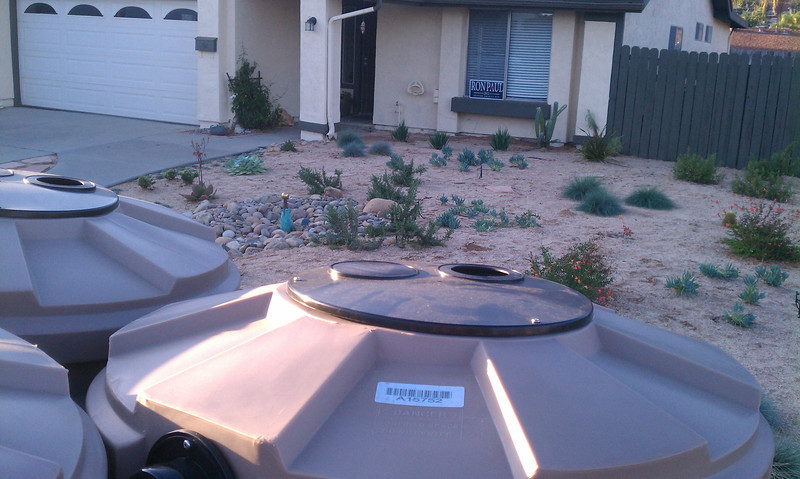 """Our own yard has zero grass.<br /> <br />  <a href=""""http://www.rain-watersystems.com/"""">http://www.rain-watersystems.com/</a>"""