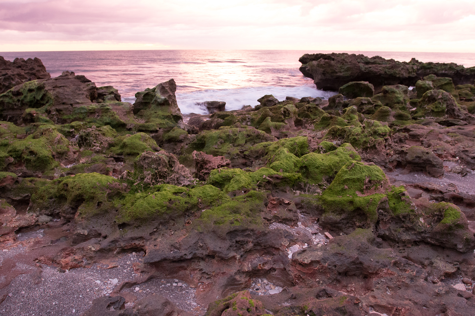 Coral Cove Rocks