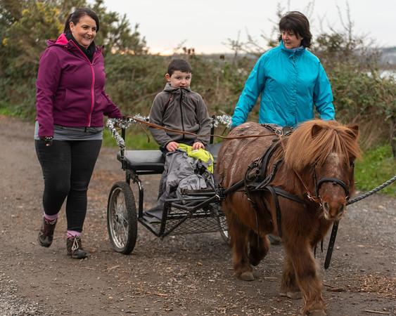 Pony camp am4345